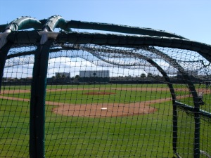 Back fields at Roger Dean