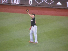 Stanton catching a fly