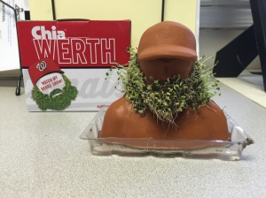 Chia Werth in growth from Billy Armstrong