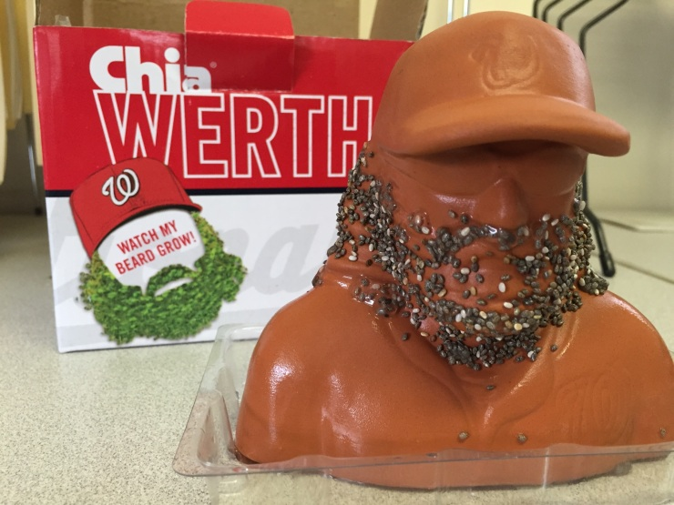 Chia Werth in progress