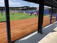 Left field group seating area allows fans to view the game through the fence